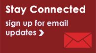 Stay Connected | sign up for email updates